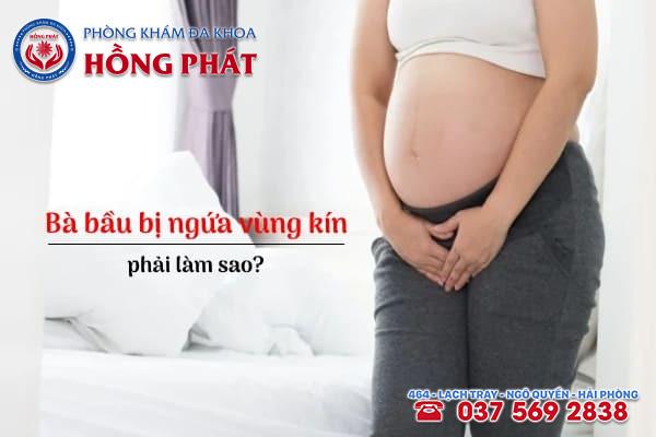 Khi bị ngứa vùng kín mẹ bầu cần lưu ý một số vấn đề