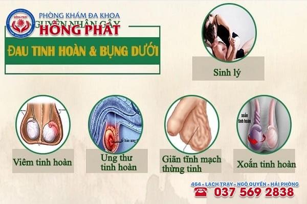 Những nguyên nhân chính gây đau tinh hoàn và bụng dưới