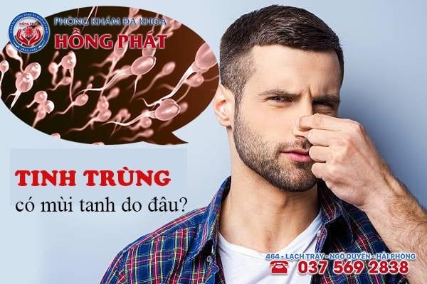 Tinh trùng có mùi tanh do đâu thắc mắc của nhiều nam giới