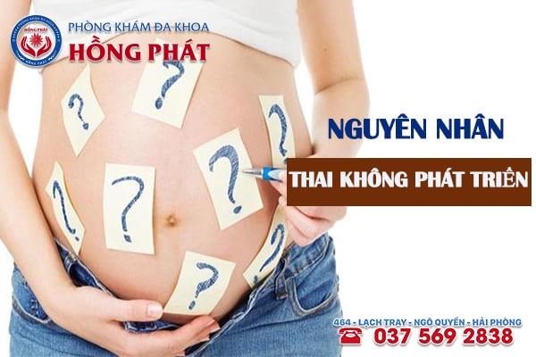 Nguyên nhân thai không phát triển là gì?