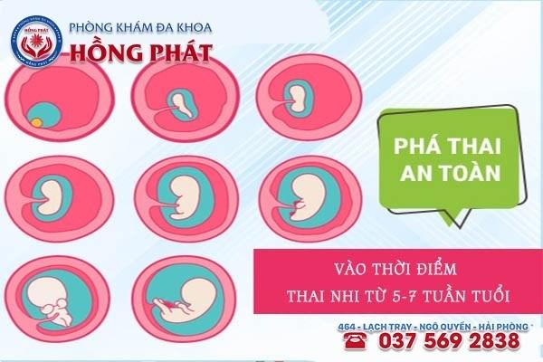 """Thai nhi từ 5-7 tuần tuổi đây được xem là thời """"điểm vàng"""" để phá thai an toàn"""