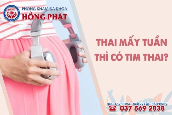 Thai mấy tuần tuổi thì có tim thai? Mẹ bầu cần hiểu rõ và lưu ý